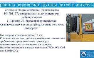 Правила перевозки детей автобусом: какие есть новые от гибдд, общие для организованной группы в международном, школьном, нарушение