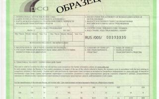 Грин карта авто: как делается страховка для поездки в европу, белоруссию, россию, для украины, можно ли задним числом, взять авто в аренду с картой