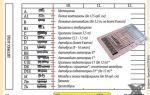 Водительское удостоверение и категории: что означают, расшифровка документов нового образца, транспортные