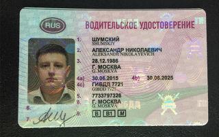 Международное водительское удостоверение: как выглядит, срок действия, новое водительское удостоверение и замена в гибдд