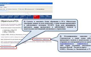 Российский союз автостраховщиков: правила, заявление на вступление в члены, горячая линия, база страховых компаний, жалоба