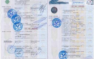Паспорт транспортного средства: как оформить электронный паспорт регистрации, норме выдачи, средства птс, технический, безопасности, самоходного тс, копия, положение